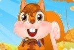 Adorable écureuil