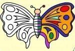 Coloriage de papillon