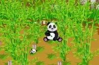 Ferme Panda