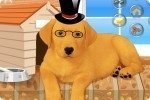 Habiller le chien 2 2