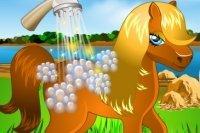 Lave le Poney