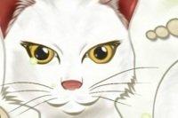 Le chat qui calcule