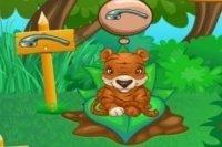 S'occuper des animaux de la forêt