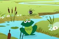 Nourris la grenouille