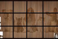 Puzzle Chien